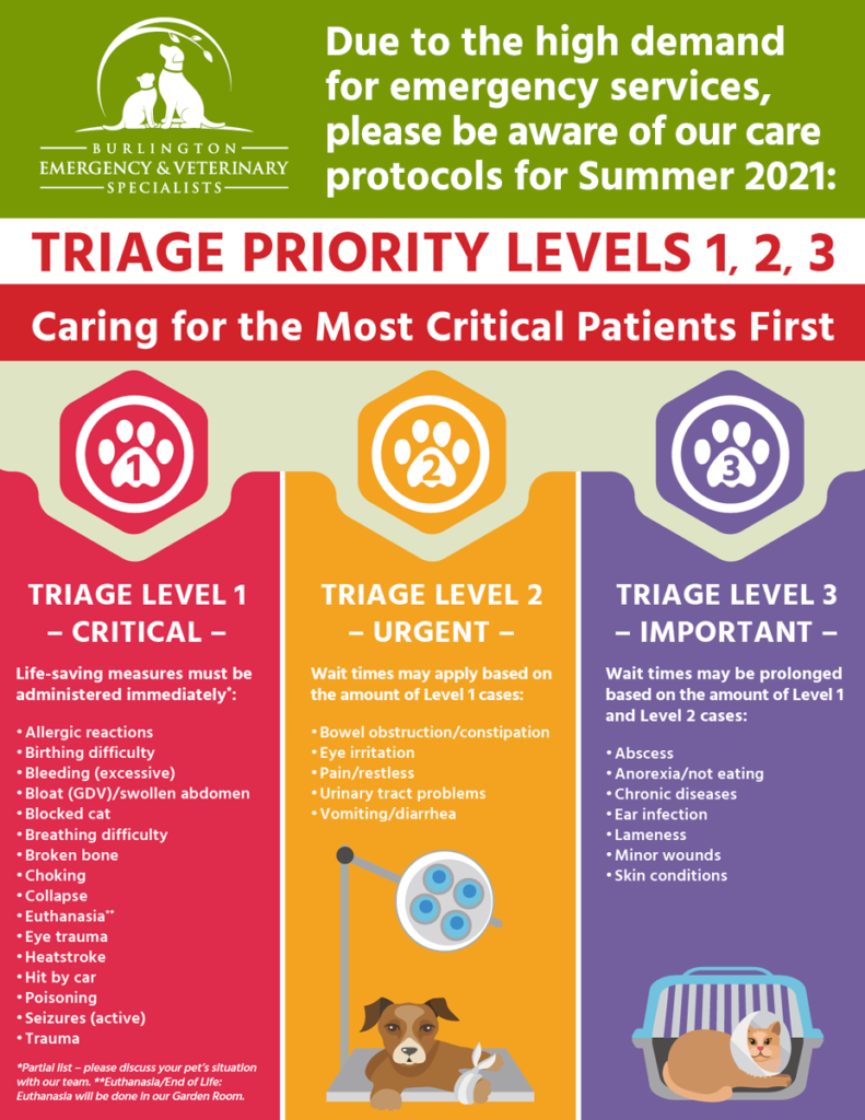 triage priority sign summer 2021